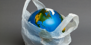 World-in-Plastic-Bag